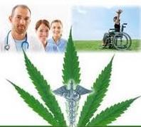 Medical marijuana program and doctors in RI
